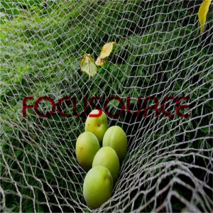 Fruit Collecting Net