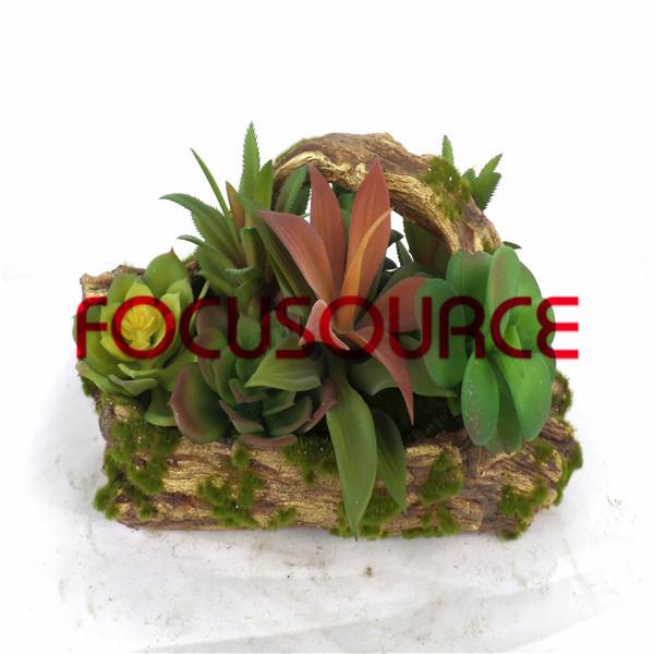 Artificial Succulent Plants Bonsai-SM005KM-O-010 Featured Image