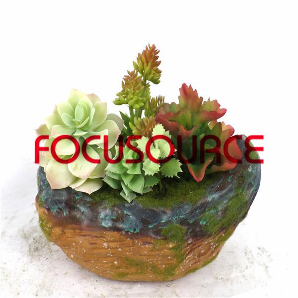Artificial Succulent Plants Bonsai-SM004KM-O-008 Featured Image