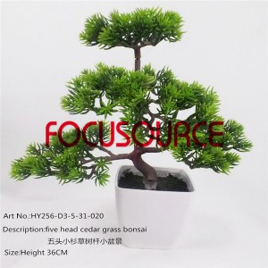 Artificial Mali Bonsai Tree-HY256-D3-5-31-020