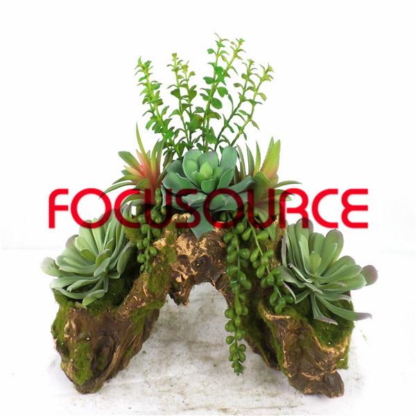 Artificial Succulent Plants Bonsai-SM006KM-O-012 Featured Image