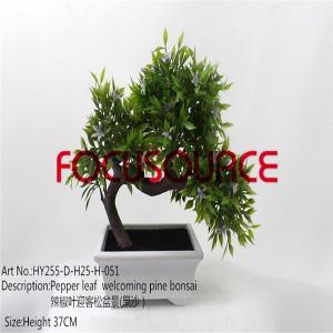 Artificial Small Bonsai Tree-HY255-D-H25-H-051