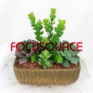 Artificial Succulent Biljke Bonsai-SM019K-O-037