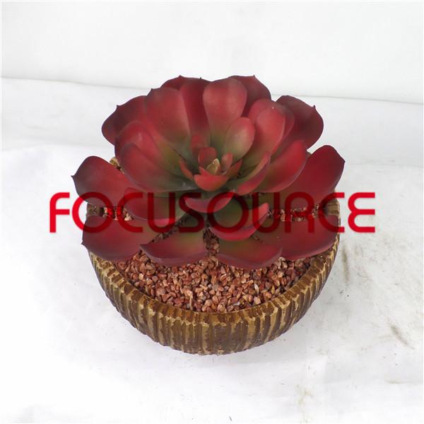 Artificial Succulent Plants Bonsai-SM003K-O-005 Featured Image