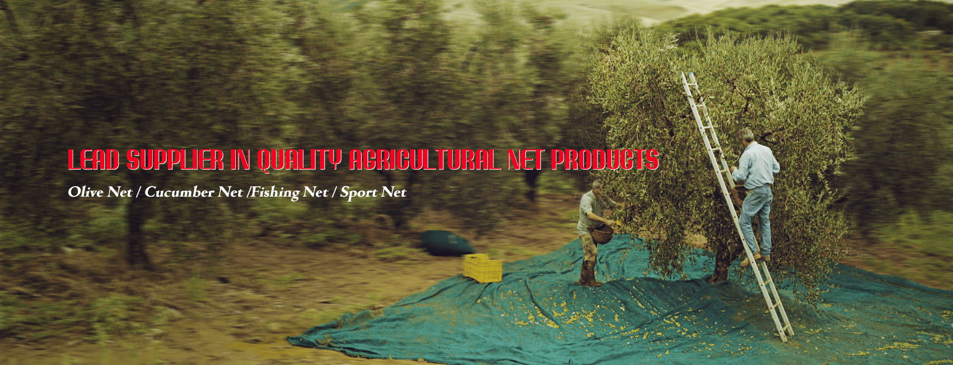 Shade Net / Plant support Net /Fishing Net / Sport Net