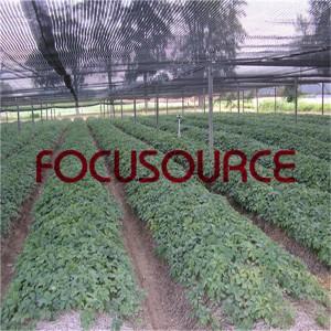 Agricultrue Sun Shade Net