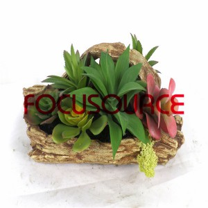 Piante succulente artificiali Bonsai-SM005K-O-009