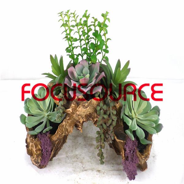 Artificial Succulent Plants Bonsai-SM006K-O-011 Featured Image